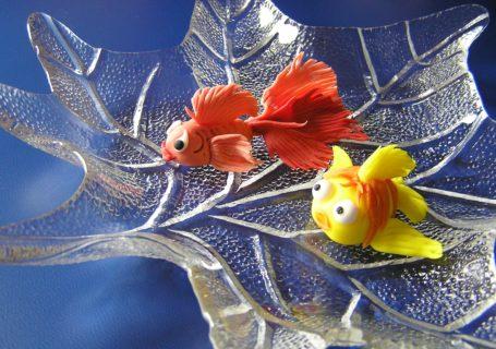 Fonndantfische